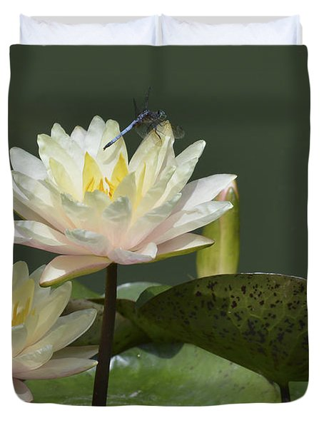 Two Yellow Water Lilies Duvet Cover by Linda Geiger