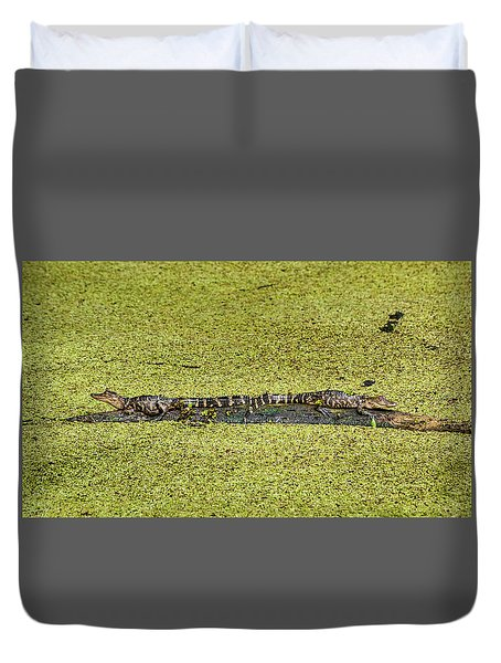 Duvet Cover featuring the photograph Two Young Gators by Steven Sparks