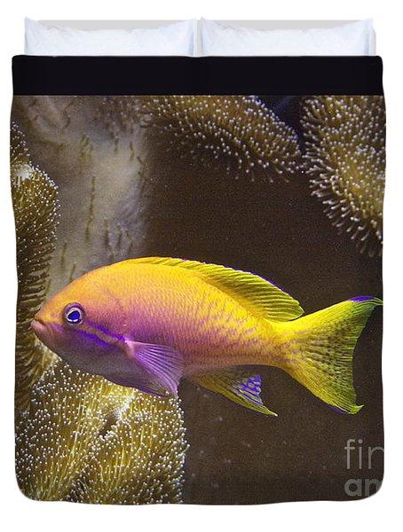 Underwater Dream Duvet Cover