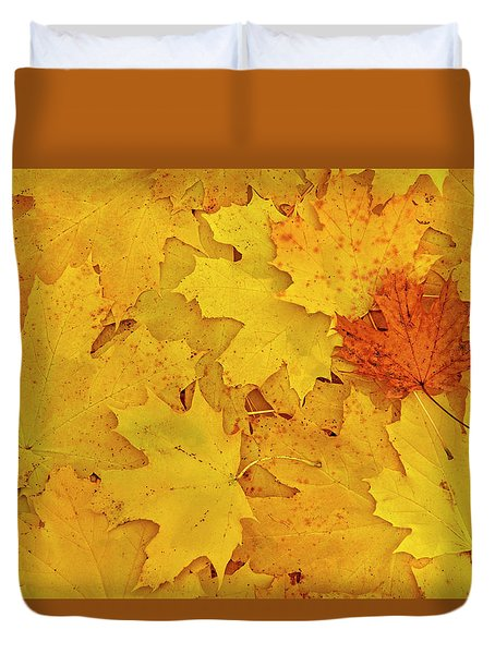 Duvet Cover featuring the photograph Understory by Tony Beck