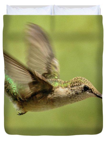 Untitled Hum_bird_one Duvet Cover