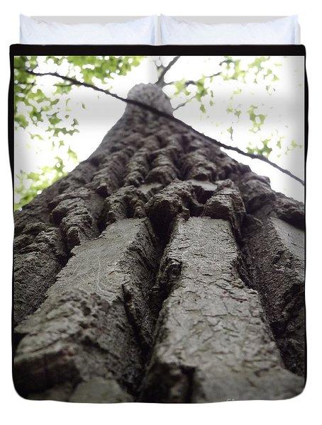 Up A Tree Duvet Cover by Erick Schmidt
