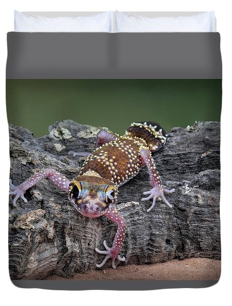 Duvet Cover featuring the photograph Up And Over - Gecko by Nikolyn McDonald