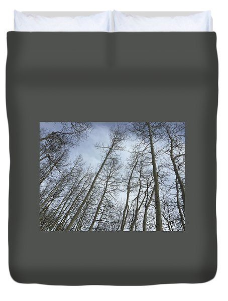 Up Through The Aspens Duvet Cover by Christin Brodie