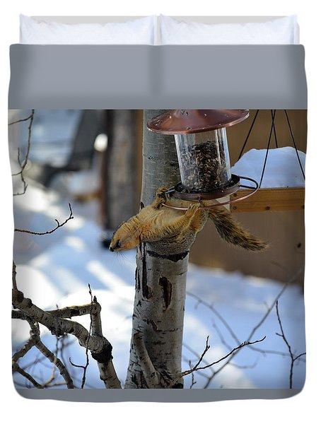 Upisde Down Squirrel Duvet Cover