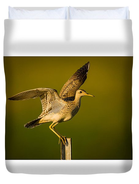 Upland Sandpiper On Steel Post Duvet Cover