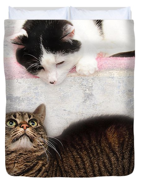 Upstairs Downstairs With Emmy And Pepper Duvet Cover by Andee Design