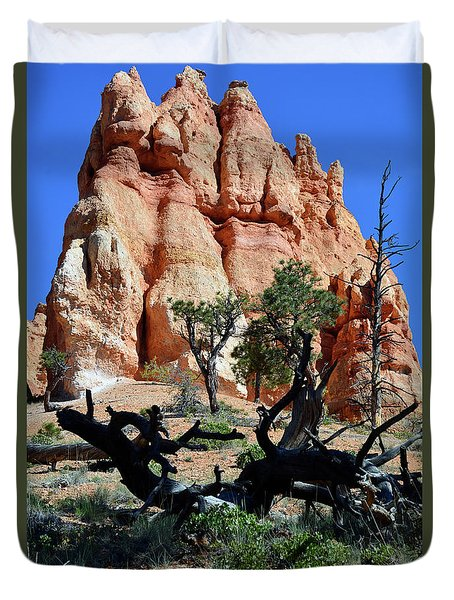 Duvet Cover featuring the photograph Upward by Bruce Gourley