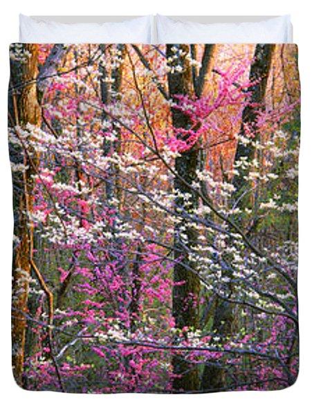 Usa, Virginia, Shenandoah National Park Duvet Cover