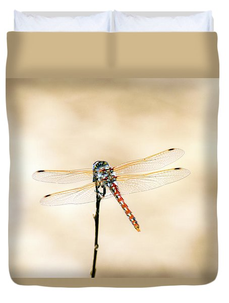 Duvet Cover featuring the photograph Varigated Meadowhawk Dragonfly Sympetrum Corruptum by Frank Wilson
