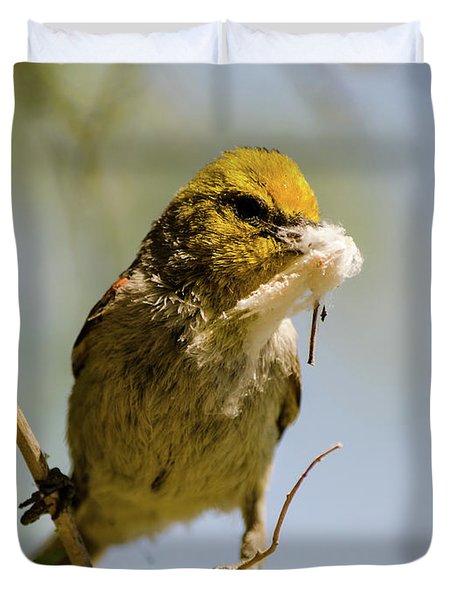 Verdin Building A Nest Duvet Cover