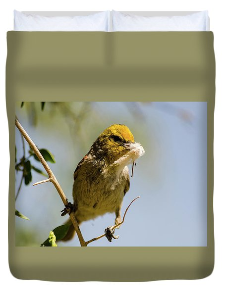 Verdin Building A Nest Duvet Cover