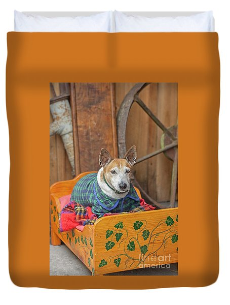 Duvet Cover featuring the photograph Very Old Pet Dog In Clothes On Own Bed by Patricia Hofmeester