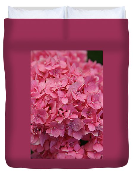 Very Pink Hydrangea Blossoms 2578 H_2 Duvet Cover