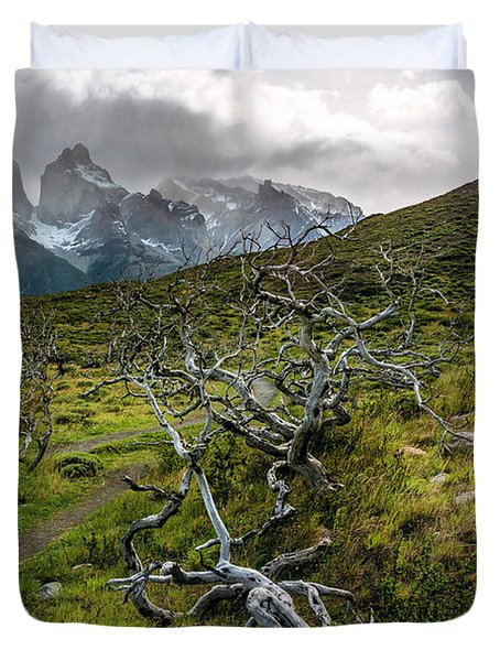 Vibrant Desolation Duvet Cover by Andrew Matwijec