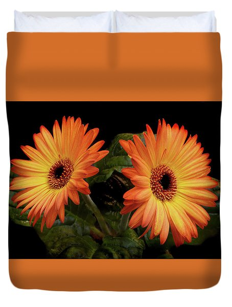 Vibrant Gerbera Daisies Duvet Cover by Terence Davis