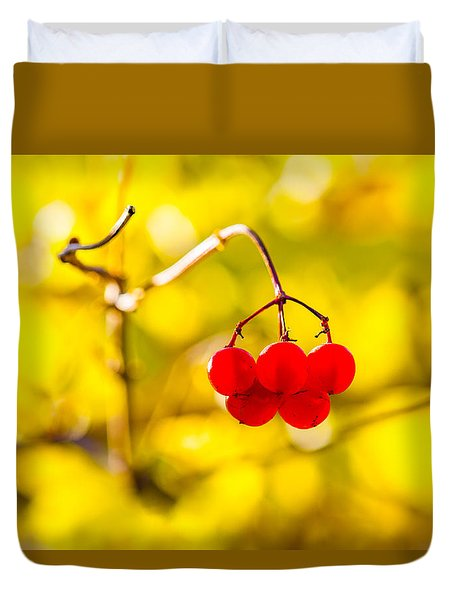 Viburnum Berries - Natural Olympic Emblem Duvet Cover