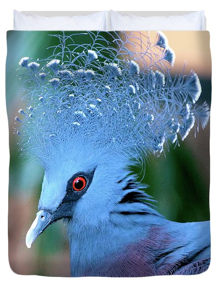 Victoria Crowned Pigeon Duvet Cover