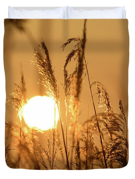 View Of Sun Setting Behind Long Grass B Duvet Cover