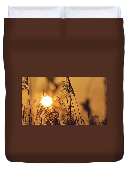 View Of Sun Setting Behind Long Grass C Duvet Cover