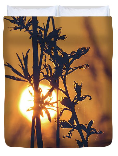View Of Sun Setting Behind Long Grass D Duvet Cover