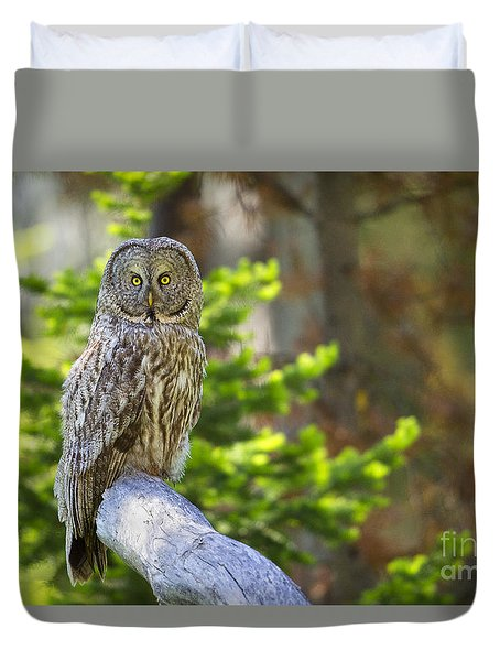 Duvet Cover featuring the photograph Vigilant by Aaron Whittemore