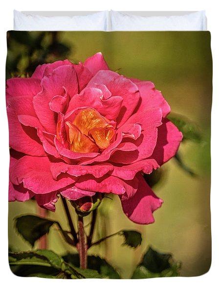 Vignetted  Rose Duvet Cover