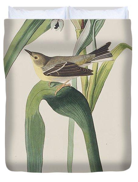 Vigor's Warbler Duvet Cover by John James Audubon