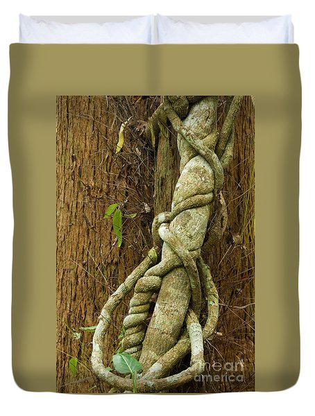 Duvet Cover featuring the photograph Vine by Werner Padarin