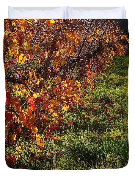 Vineyard 13 Duvet Cover by Xueling Zou