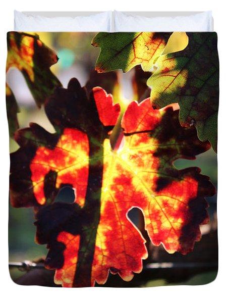 Vineyard 26 Duvet Cover by Xueling Zou