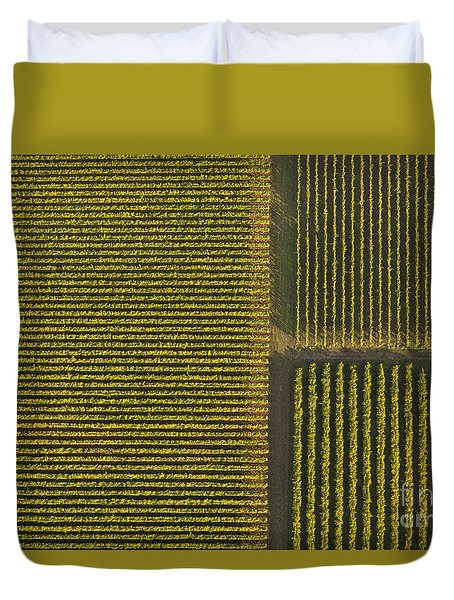 Vineyard From Above Duvet Cover by Diane Diederich