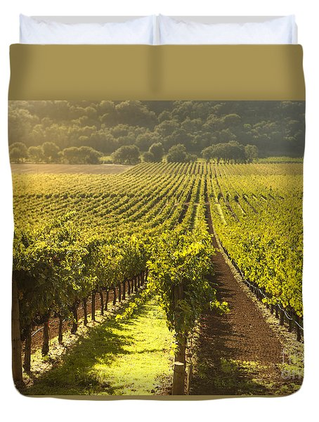 Vineyard In Napa Valley Duvet Cover by Diane Diederich