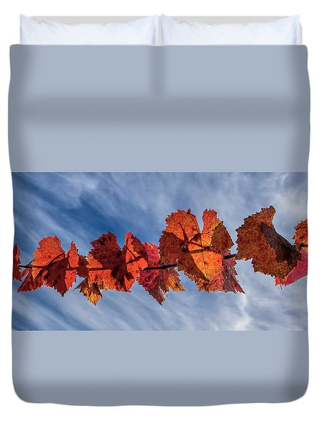 Vineyard - Late Fall Color 2 Duvet Cover