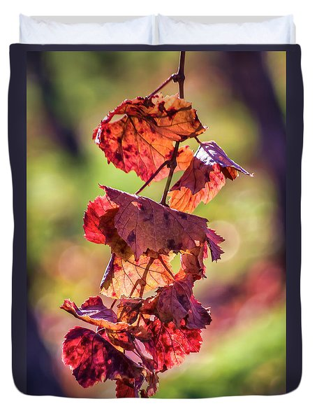 Vineyard - Late Fall Color 4 Duvet Cover