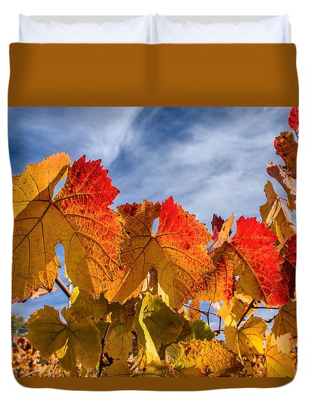Vineyard - Late Fall Color 5 Duvet Cover