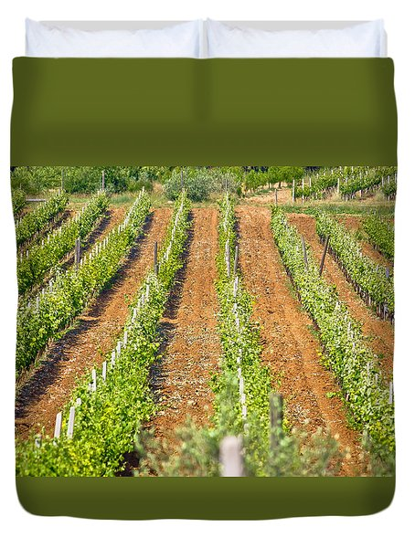 Vineyard On Red Dirt View Duvet Cover by Brch Photography
