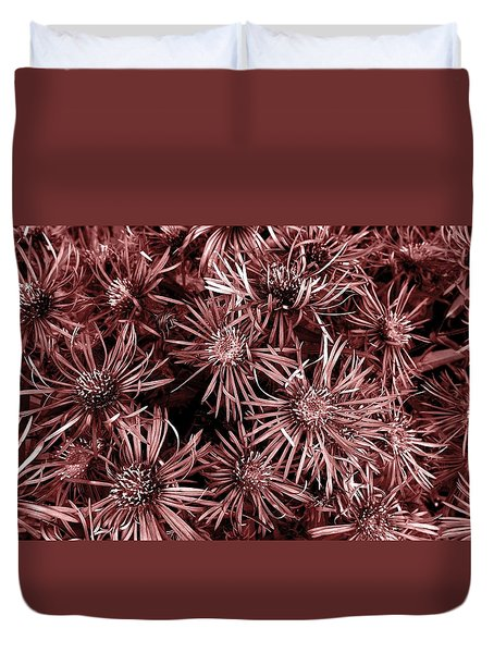 Vintage Asters Duvet Cover by Danielle R T Haney