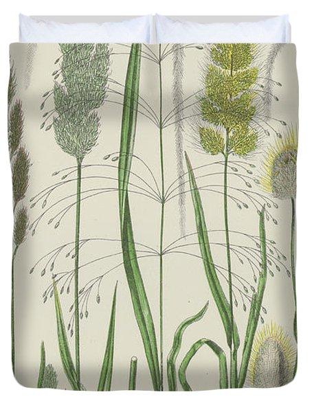 Vintage Botanical Print Of Grass Varieties Duvet Cover