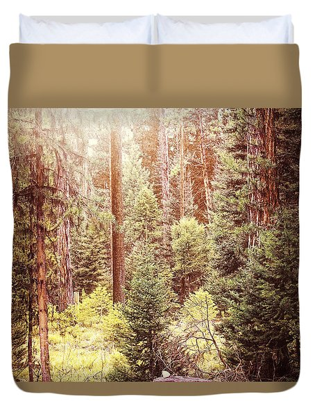 Vintage Light In The Forest Duvet Cover