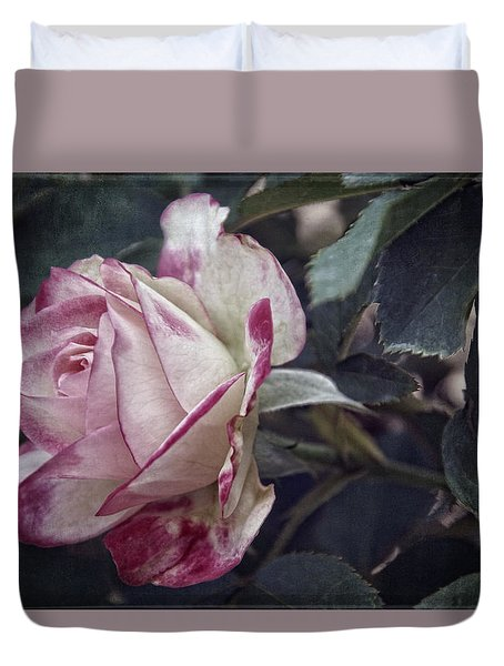 Vintage Variation Duvet Cover