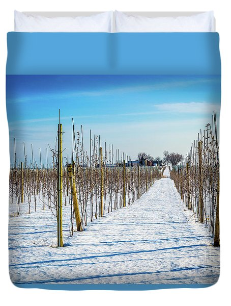 Vinyard On Down Road  Duvet Cover