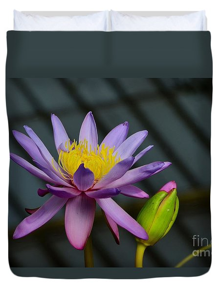 Violet And Yellow Water Lily Flower With Unopened Bud Duvet Cover