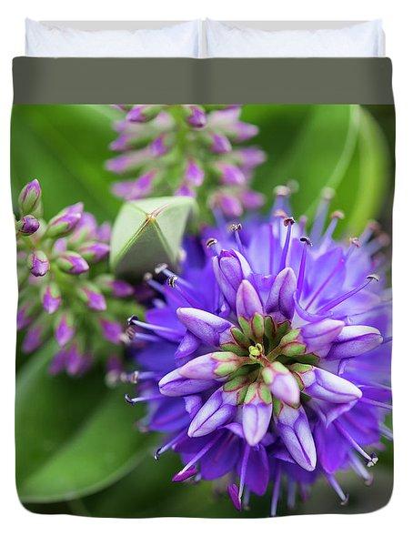 Violet Burst Duvet Cover