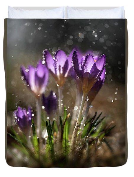 Violet Crocuses In The Morning Rain Duvet Cover by Jaroslaw Blaminsky