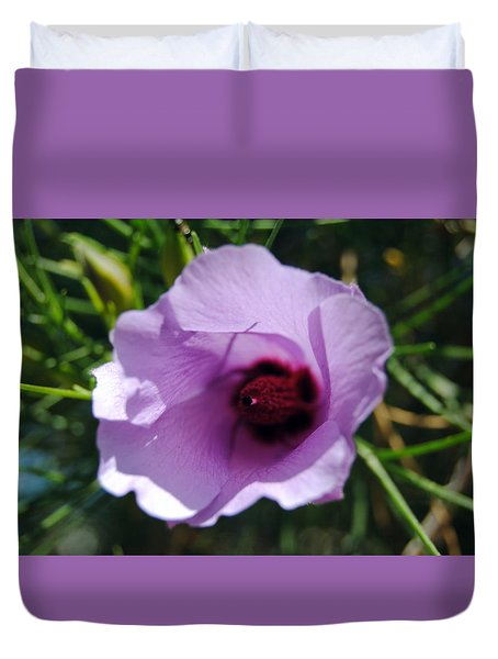 Alyogyne Hakeifolia 1 Duvet Cover by Isam Awad