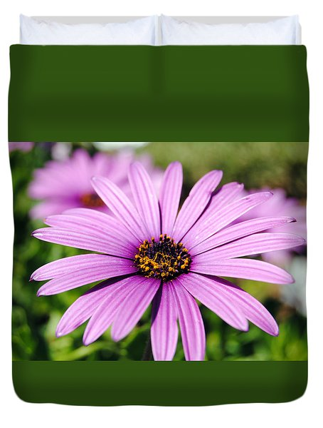 The African Daisy 1 Duvet Cover