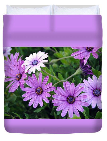 The African Daisy Flowers Duvet Cover