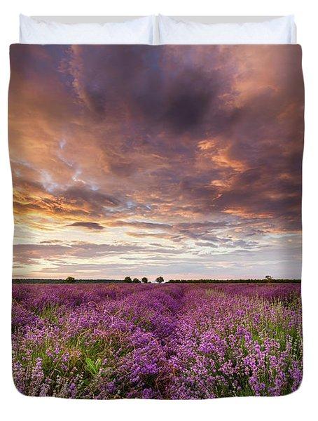 Violet Sunrise Duvet Cover by Evgeni Dinev