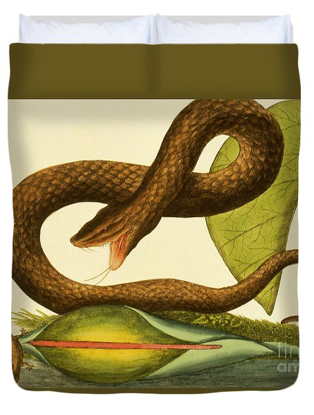 Viper Fusca Duvet Cover by Mark Catesby